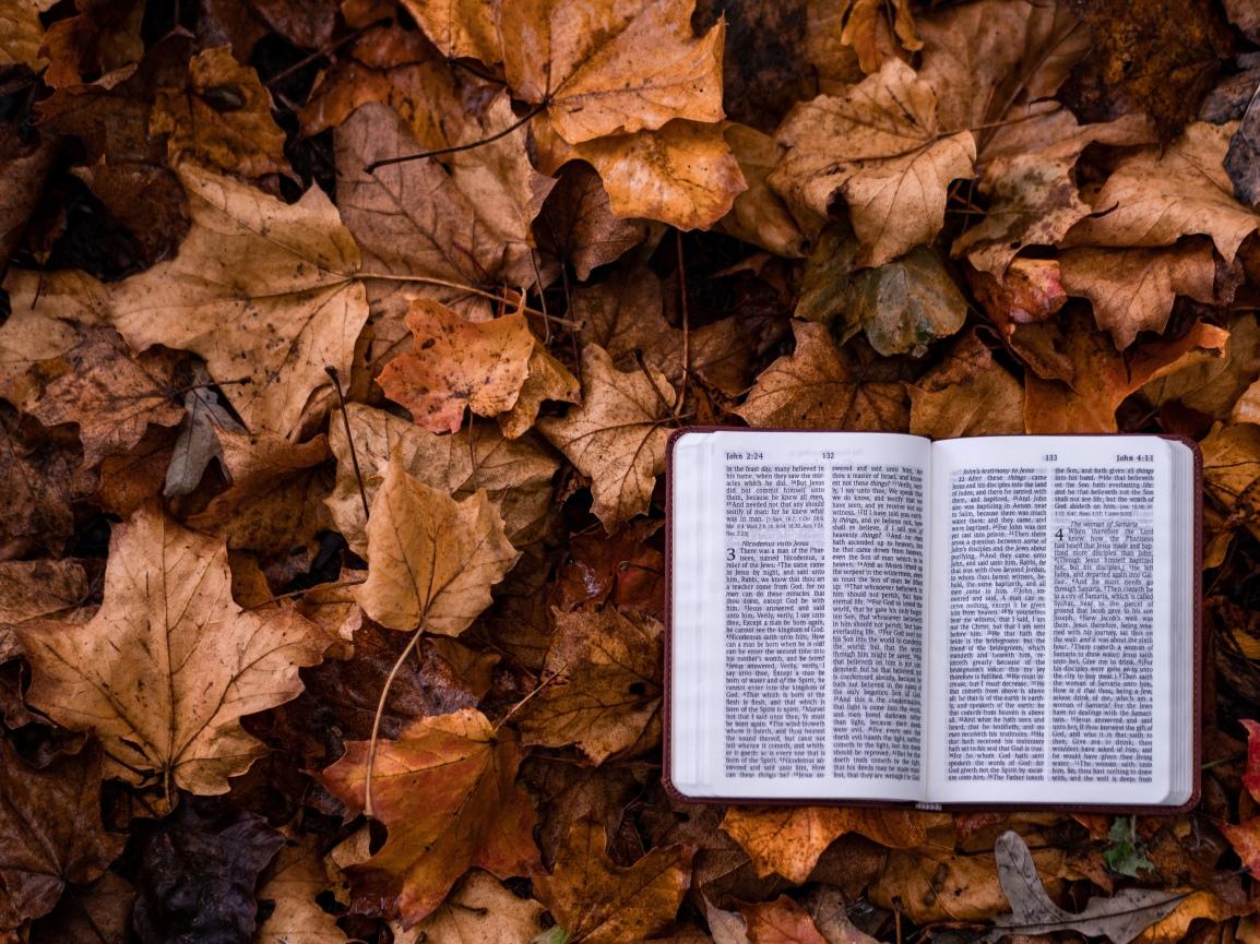 Let's Get Biblical – How We ShowUp
